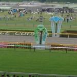 ドリームバレンチノは鞍上岩田でフェブラリーステークスへ!