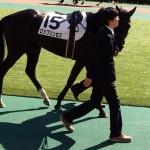 ロジプリンセス・馬の画像