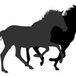 種牡馬リーディングサイアー・2000年