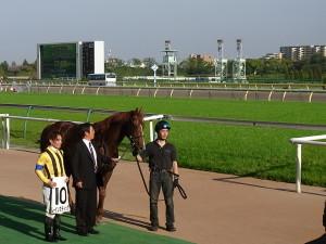 レインステック・写真馬