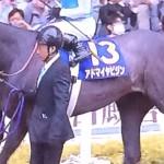 アドマイヤビジン・競走馬画像