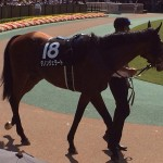 東京競馬 第9レース、初音ステークス2014